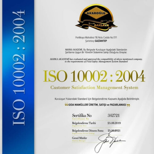 ISO 10002 2004